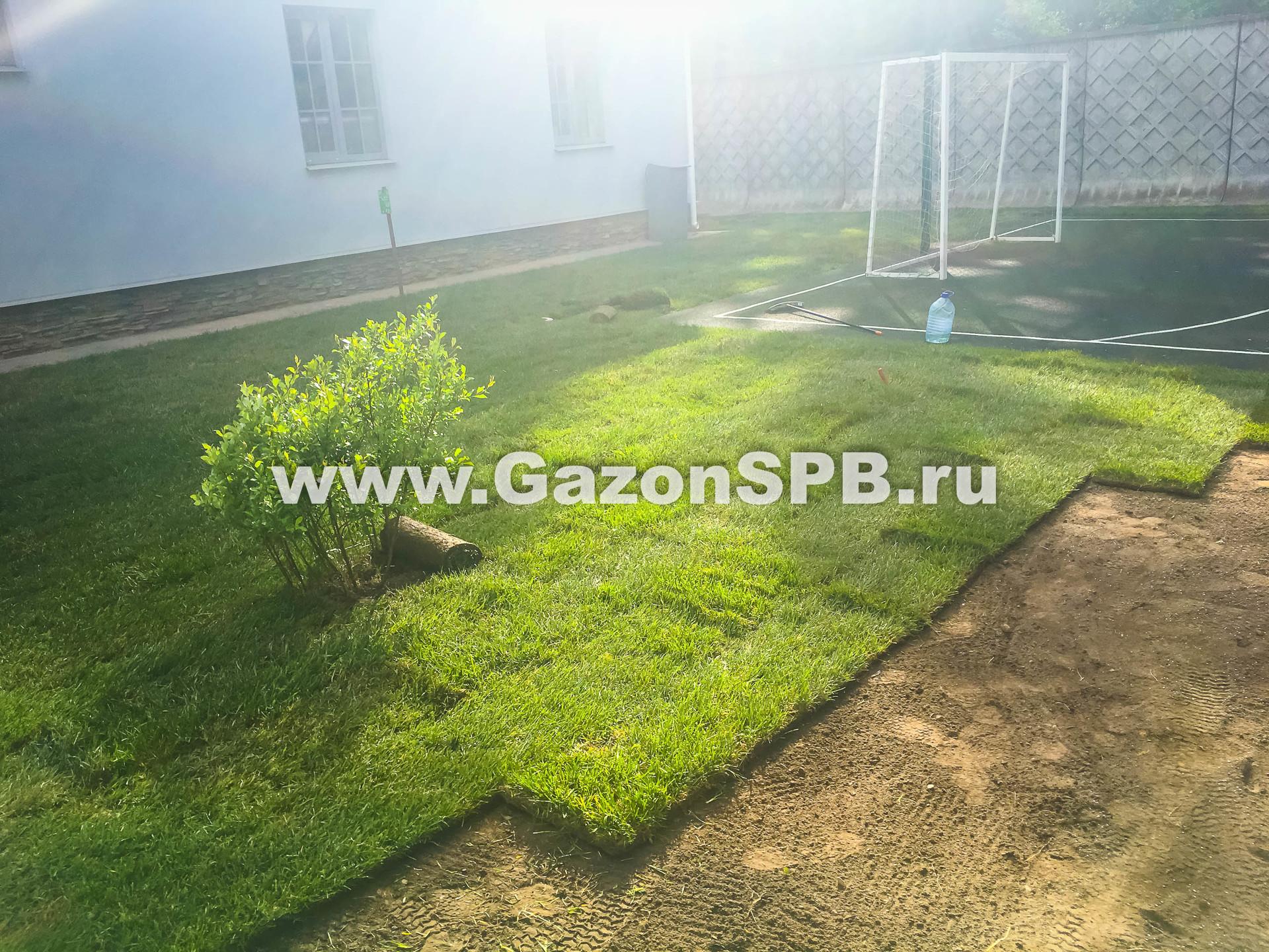 Укладка рулонного газона в г. Зеленогорск