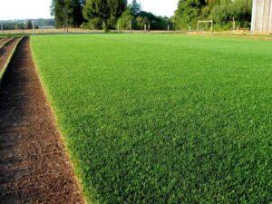 рулонная трава после устройства